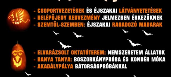 Többlet ZOO járatok a Halloween estre a Miskolci Állatkert és Kultúrparkba