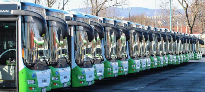 Terelt útvonalon közlekednek az 1B-s, 101B-s, és 1G-s autóbuszok Berekalján