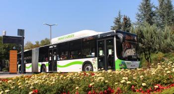 Ideiglenesen áthelyezésre kerül a Népkert autóbusz megállóhely