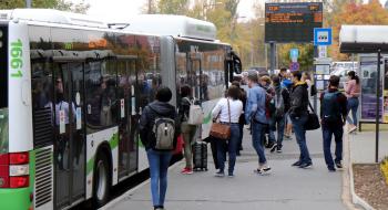 Több járat érinti az Egyetemvárost munkanapokon